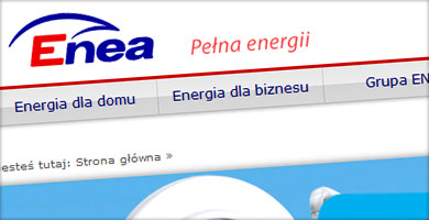 portfolio - enea.pl