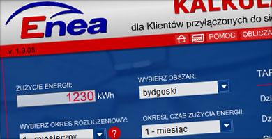 portfolio - kalkulator taryfowy ENEA S.A.