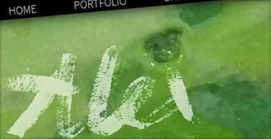 portfolio - alexstepien.work