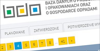 portfolio - aplikacja internetowa - Pomocnik BDO